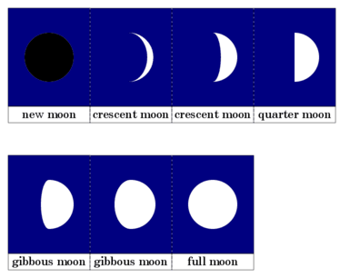 Moon Cards Printout
